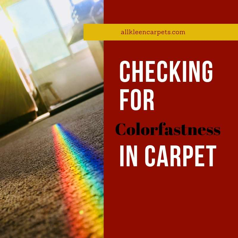 How to Test for Colorfastness in Carpet