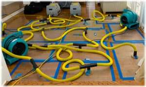 carpet-cleaning-hoses-wa