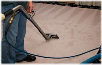 carpet cleaning services Lynnwood WA