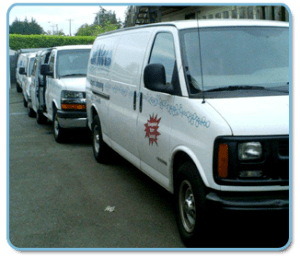 All Kleen Carpet Van Fleet Lynnwood WA