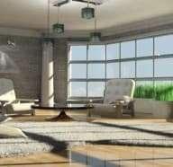 Basic Carpet Care Tips