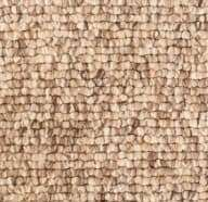 Berber Carpet Care and Your Home