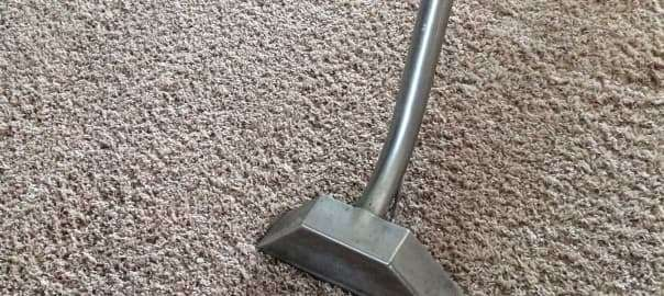 Will a Professional Cleaning Shrink My Carpet?
