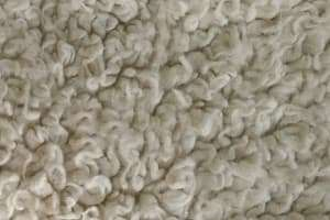 How to Revive Matted Carpet