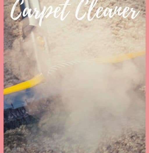 Searching for a Local Carpet Cleaner
