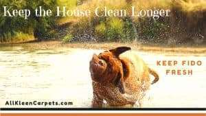 Tricks to Keep Your Home Clean Longer