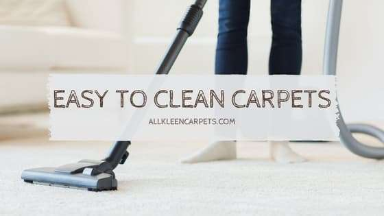 Which Type of Carpet is Easiest to Clean Lynnwood WA