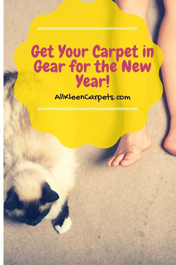 Get Your Carpet Care on Track for the New Year