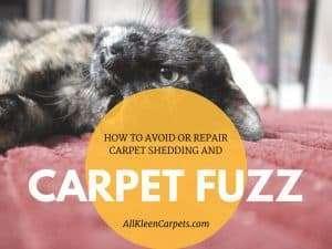 Carpet fuzz and shedding