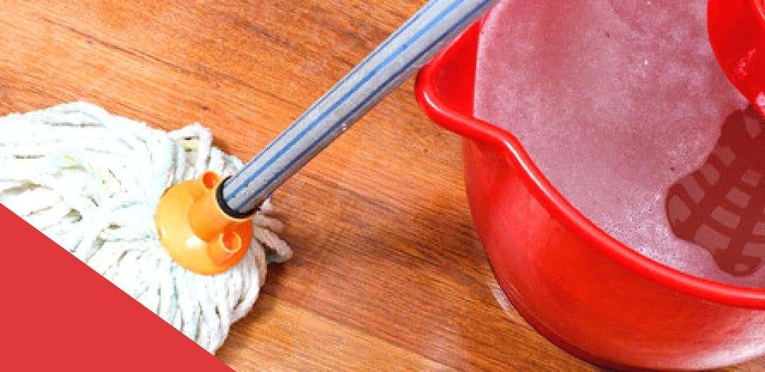 Cleaners and Appliances that Need to Be Cleaned