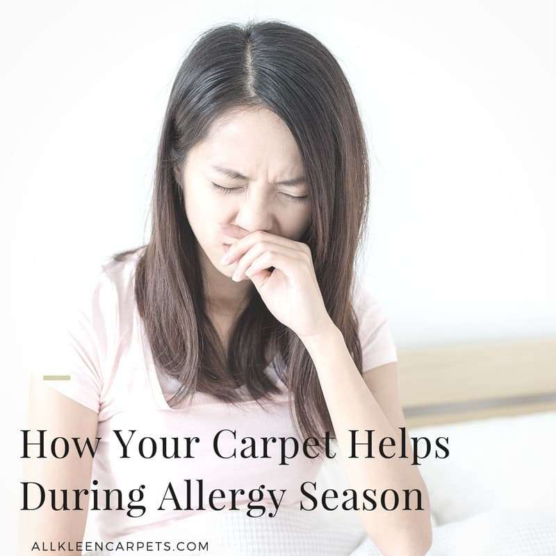 How Your Carpet Helps During Allergy Season