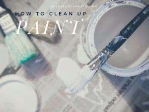 DIY Mishap - How to Clean Up Paint on the Carpet