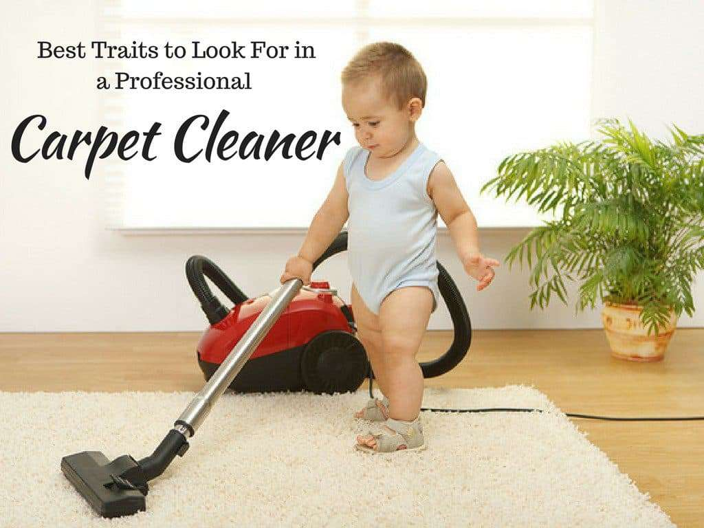 Best Traits to Look For in a Professional Carpet Cleaner