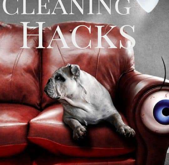 Couch Cleaning Hacks to Renew Your Furniture