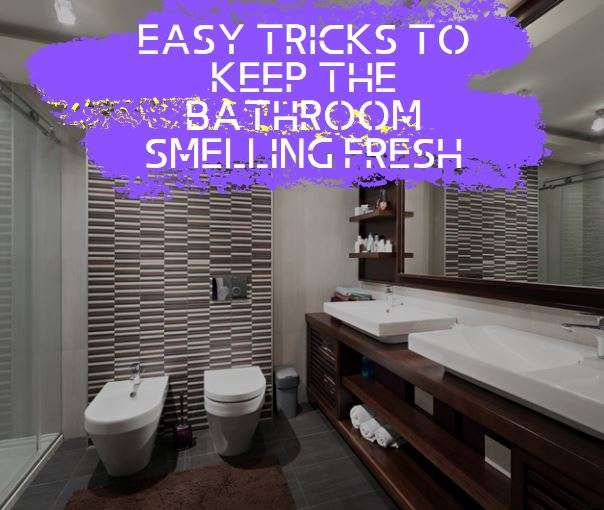 Easy Tricks to Keep the Bathroom Smelling Fresh