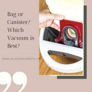 Bag or Canister? Which Vacuum is Best?