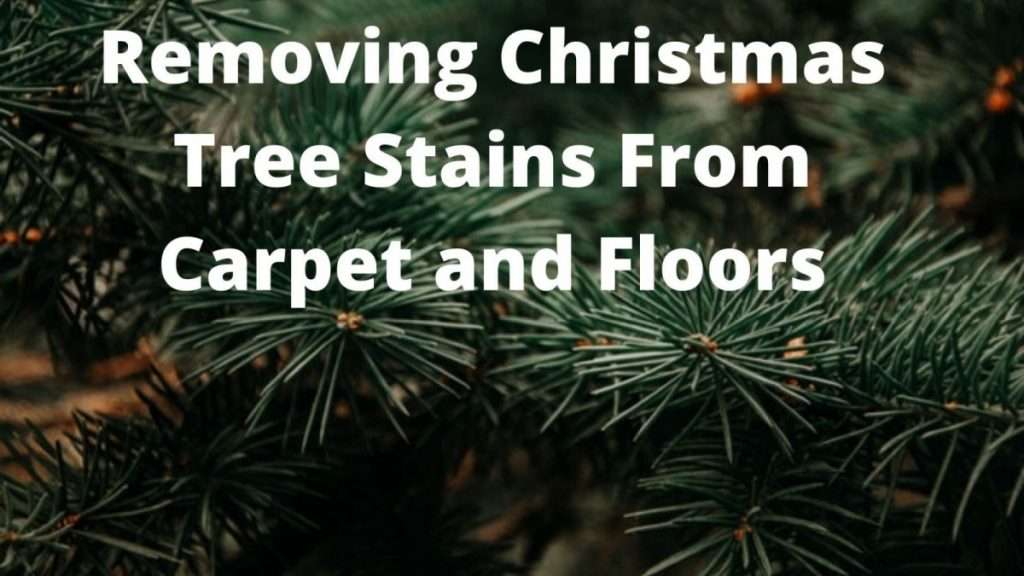 Removing Christmas Tree Stains From Carpet and Floors
