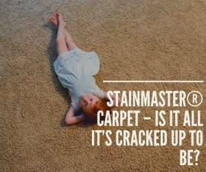Stainmaster® Carpet – Is it all it's Cracked up to be?