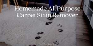 Homemade All Purpose Carpet Stain Remover