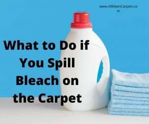 What to Do if You Spill Bleach on the Carpet