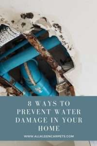 8 Ways to Prevent Water Damage in Your Home