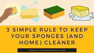 3 Simple Rule to Keep Your Sponges (and home) Cleaner